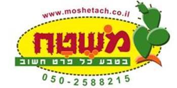 לוגו מושטח