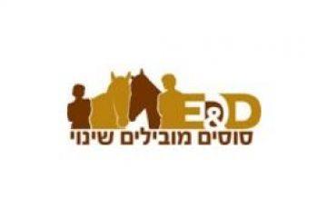 סוסים מובילים שינוי – סוסים ונשים